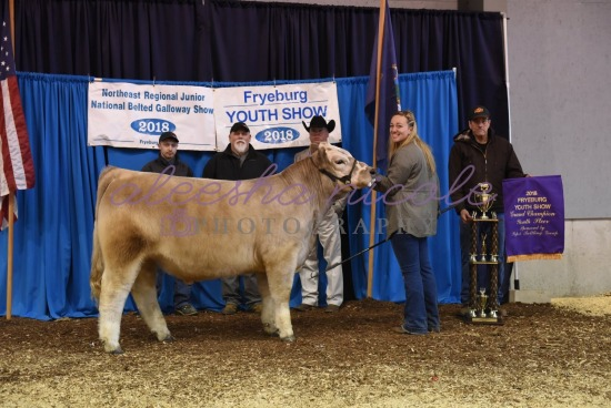 Youth Steer Backdrop