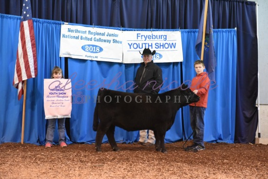 Youth Heifer Backdrop